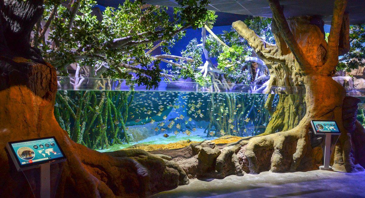 billet-aquarium-seville