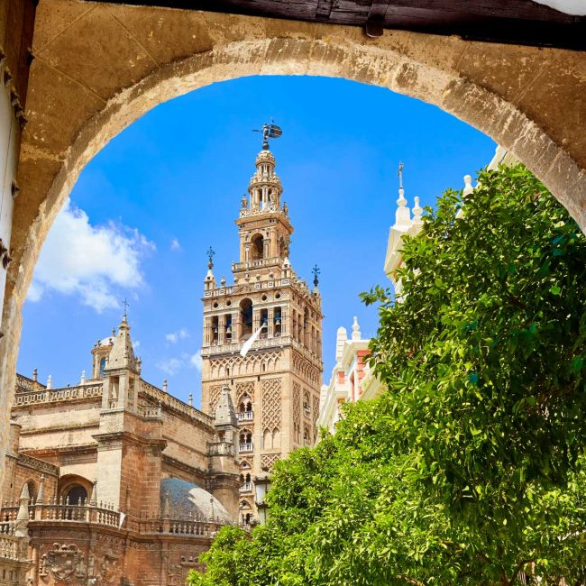 visite-guidée-cathedrale-seville