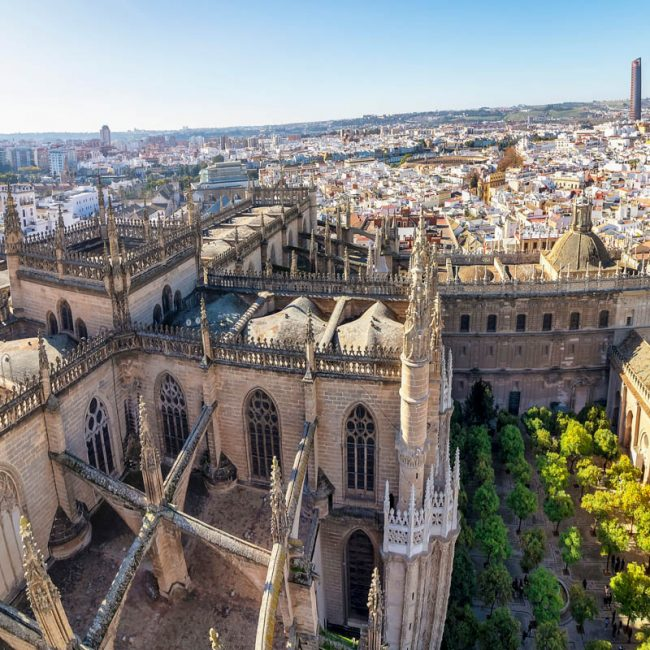 vue-giralda-cour-cathedrale-seville